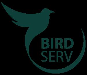 BIRDSERV Inovação em Tecnologia